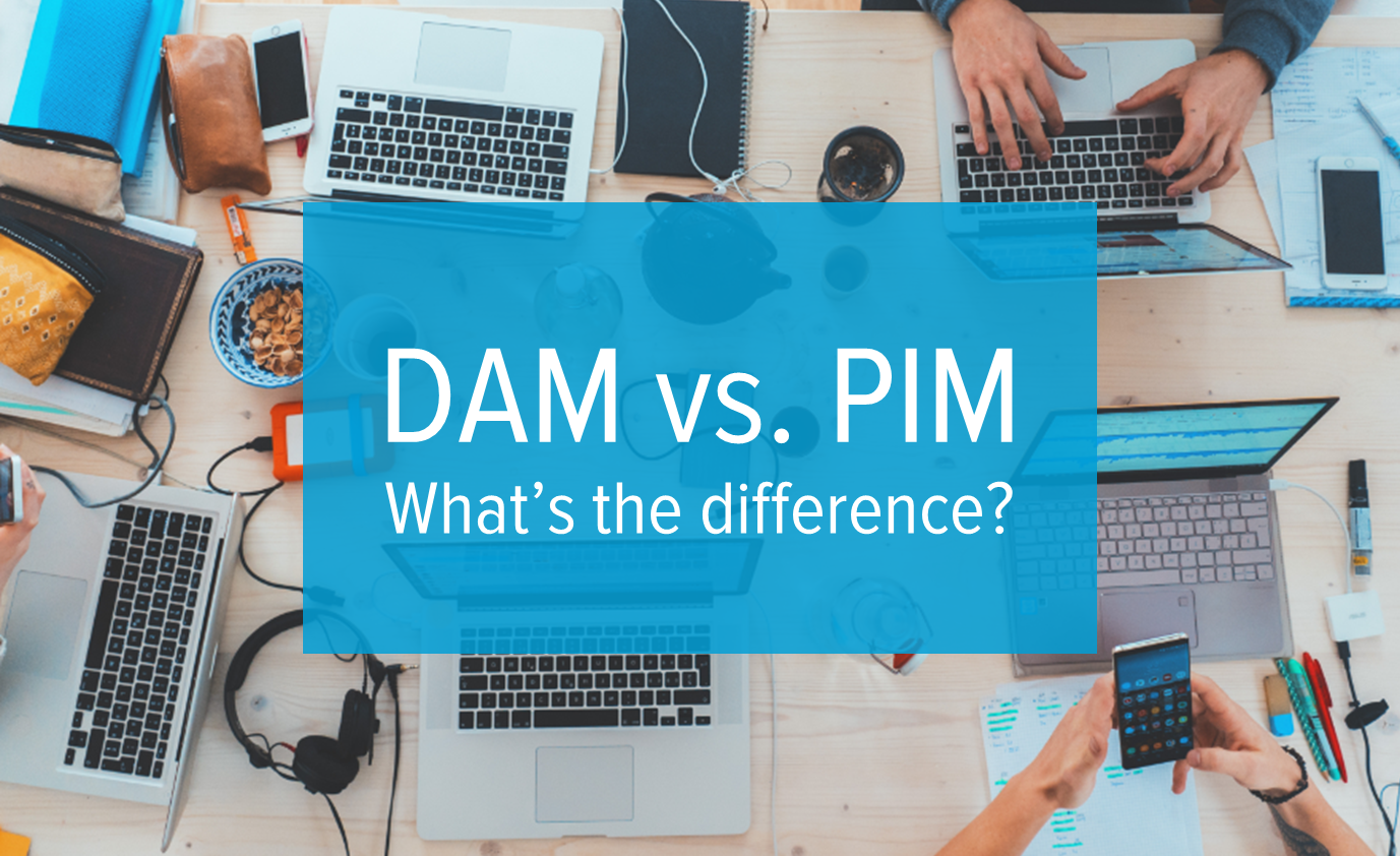 DAM and PIM - what is the difference-1