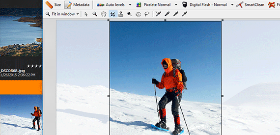 Find, Update and Change Files with a Click